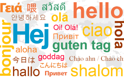 Phrases of the Week: Spanish