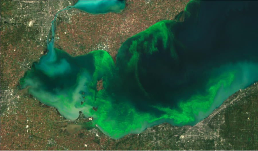 From Good to Bad to Worse — Catastrophic Algae in The Great Lakes