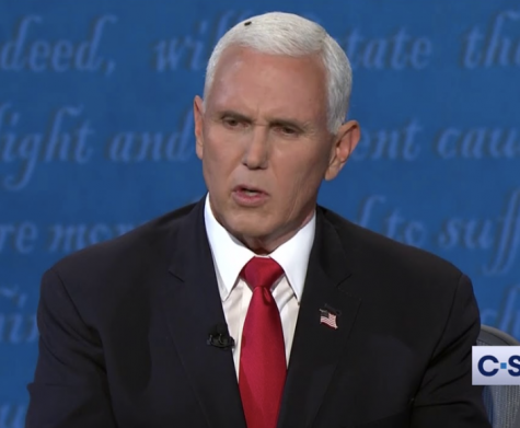 A fly gets comfortable on Vice President Michael R. Pence's hair.