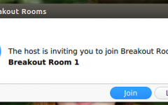 Zoom breakout rooms allow participants to meet in a more intimate environment, but also create awkward situations.